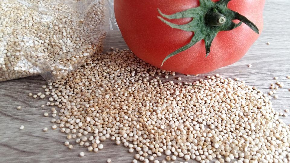 bílá quinoa