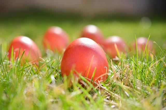 vajíčka v trávě
