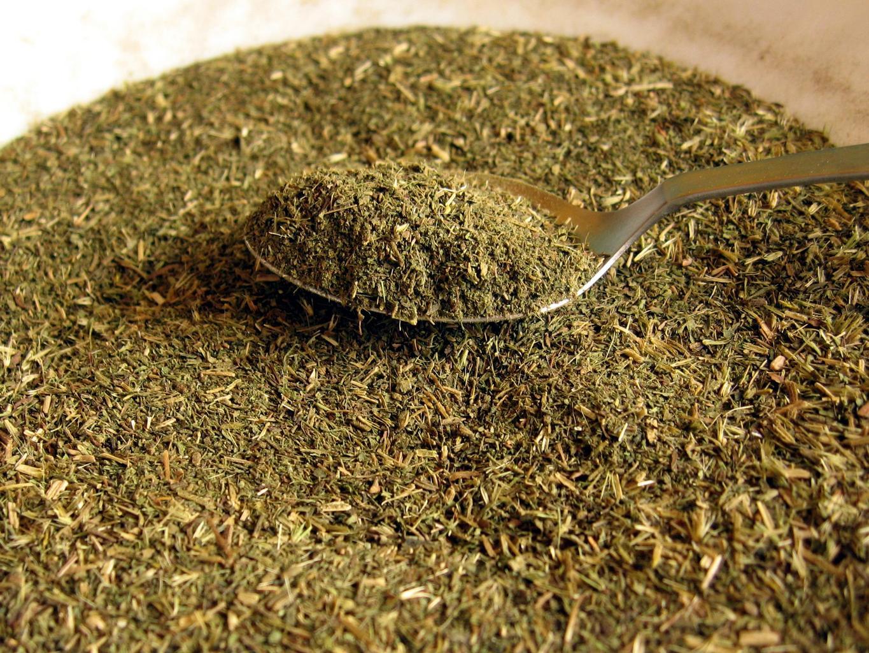 stevia3